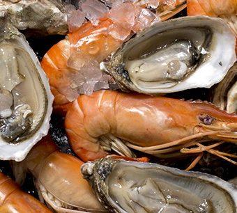 pling-prawns-shuck-oysters-dinner-buffet