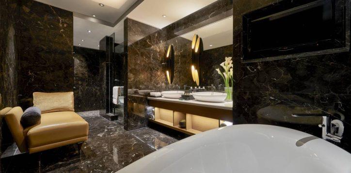 accent-suite-bathroom-2-2