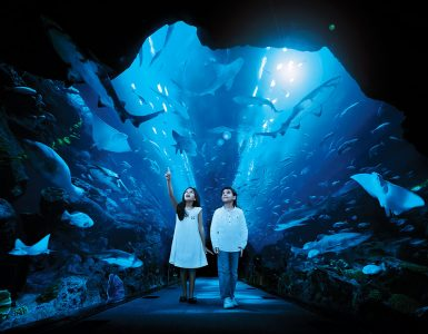 save-upto-30-on-attraction-passes-when-you-book-with-us