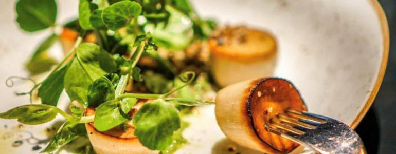 food-blogger-dinner