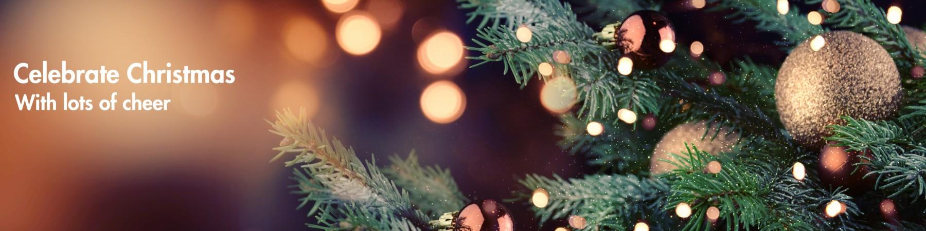 Christmas gift ideas for bachelors