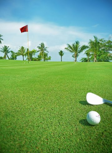 so-golfer-receive-complimentary-green-fee-transfer