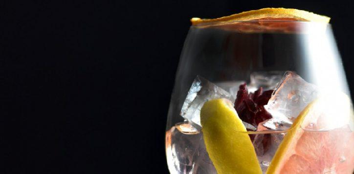 gin-01