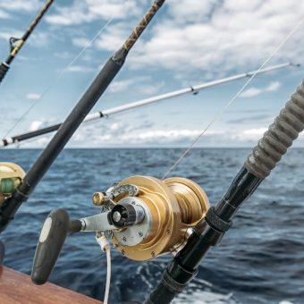 olea-gone-fishing-special-menu