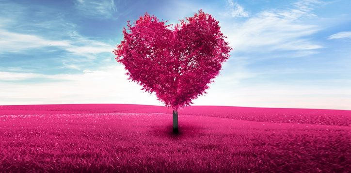 valentine_pr