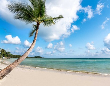 how-to-get-to-koh-samui-from-bangkok