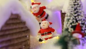 festive-celebrations