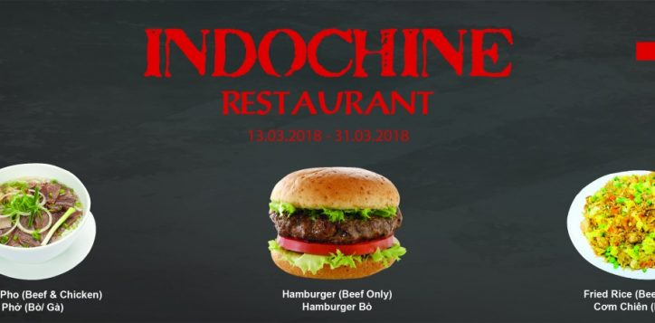 minisite-indochine-01-01