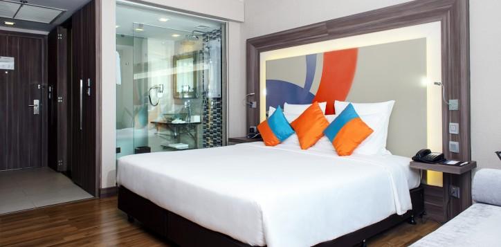 standard-rooms