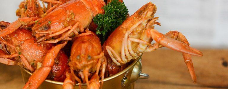 bucket-shrimp