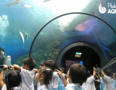 phuket-aquarium