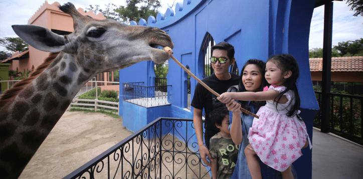 camel-republic-cha-am