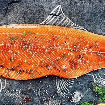 tasmanian-salmon