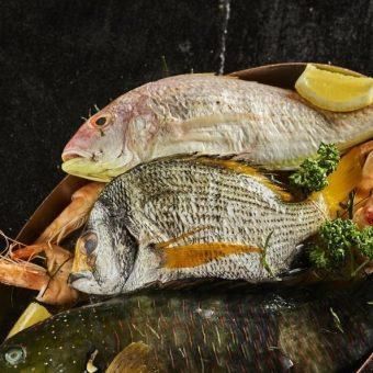 seafood-thursdays