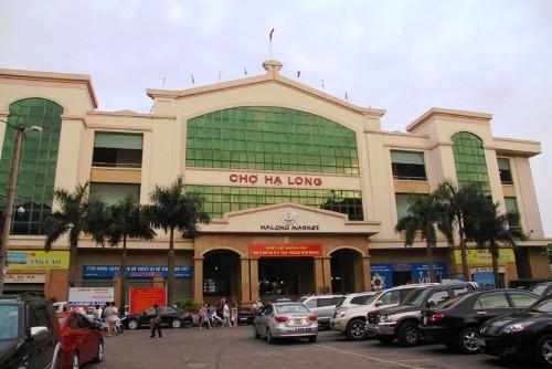 cho-ha-long-1