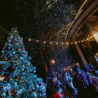 christmas-in-santas-white-house