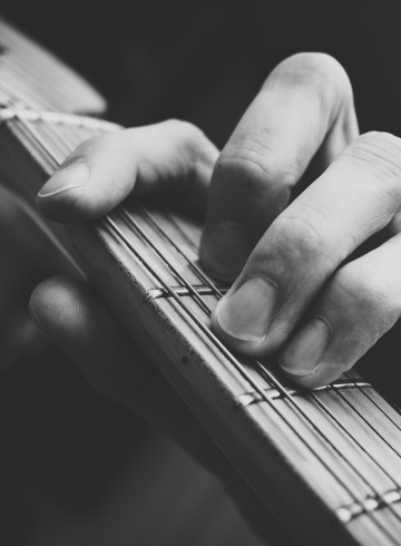 the-sound-of-sofitel-live-music