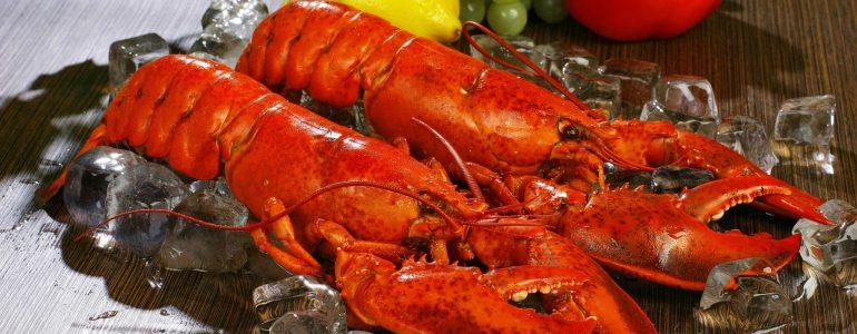 18-dec-boston-lobster-dinner