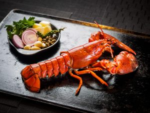 Blue Canadian Lobster - Best Seafood buffet Bangkok