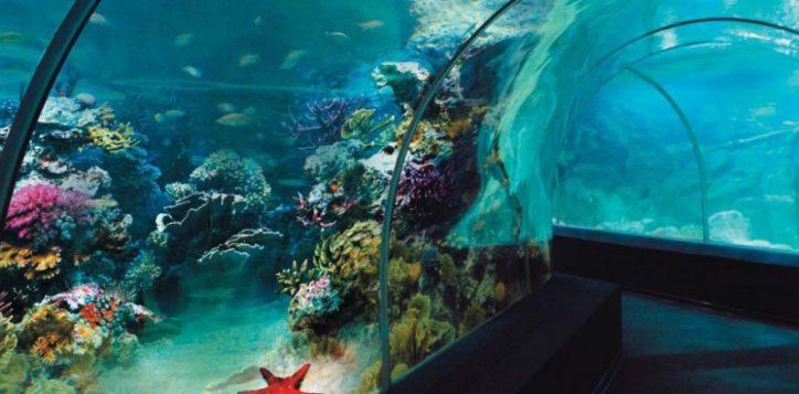oceanarium-2