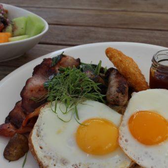 ibis-breakfast-special