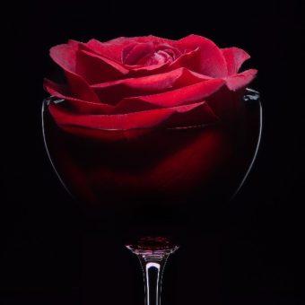 valentines-day-celebration