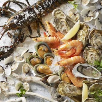 lobster-oyster-brunch-galore