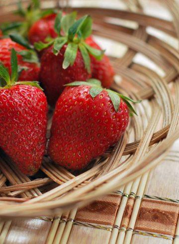 strawberry-sensations-thb1590