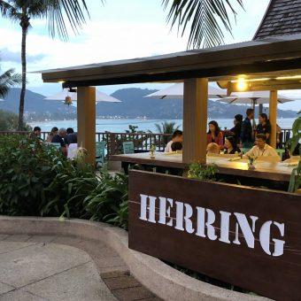 herring-bargrill-theme-nights