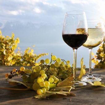 shun-premium-wine-dinner