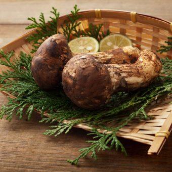 hana-goyomi-prime-wagyu-and-matsutake-mushroom