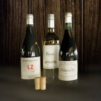 sommelier-selection