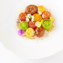 Tomato Myriad