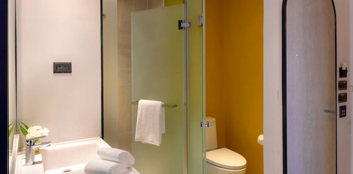 toilet-22-2