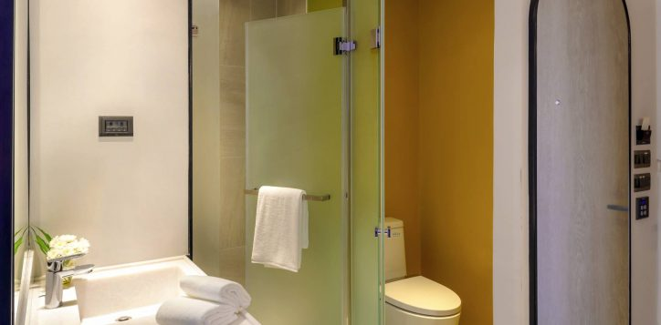 toilet-25-2