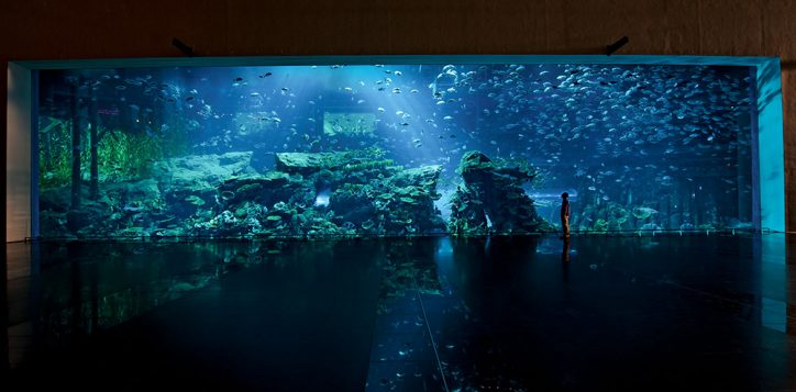 aquarium-tank-facade_approved
