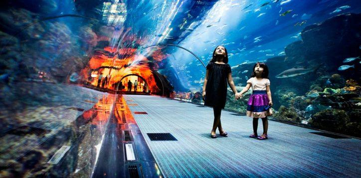 1-dubai-aquarium-1