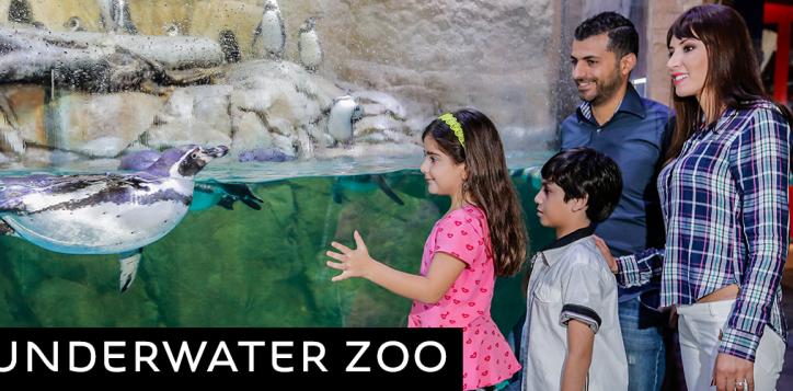 nov-und-zoo