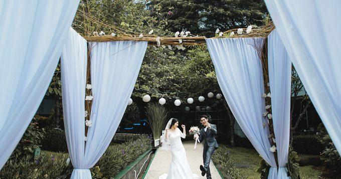 bridget-wedding-planner_wedding-happy-kim_20