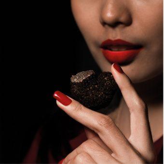 scarlett-is-falling-for-truffles