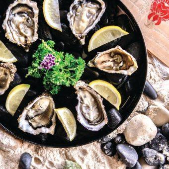 scarlett-1-oysters