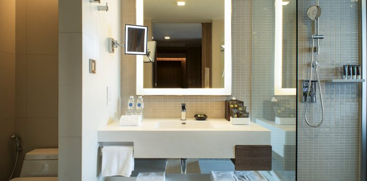 guest-room-bathroom-2_re