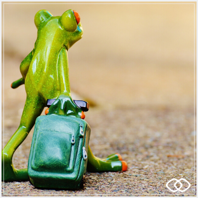 """frog travel"