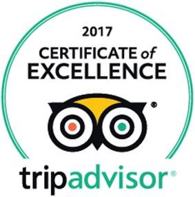 certificate_of_excellence_2017_en_us_large-19949-5-1