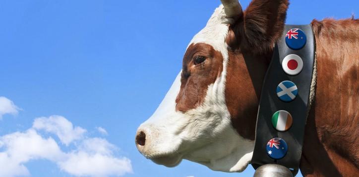 special-offer-beefpromotion-jpg