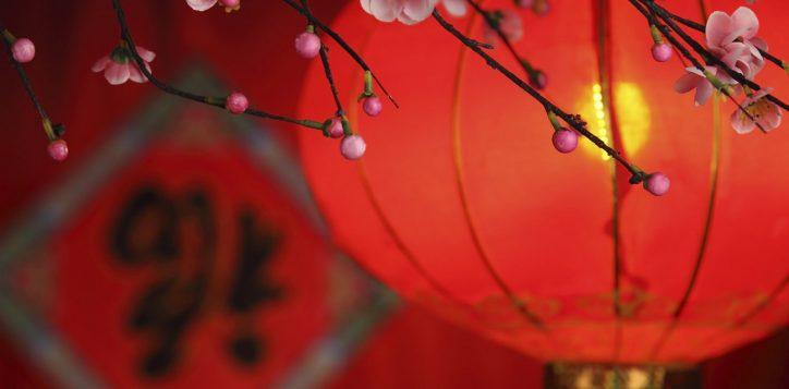 chinese-lantern