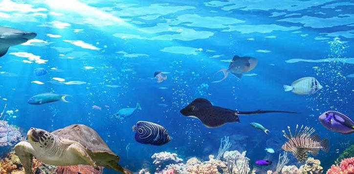 aquaria-phuket-phuket-attractions