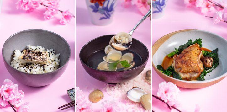 japanese-dinner-set1-2
