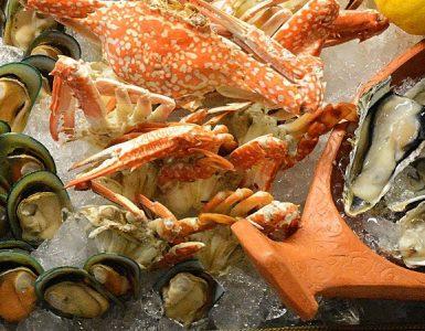 seafood-weekend-brunch