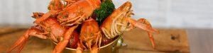 bucket shrimp